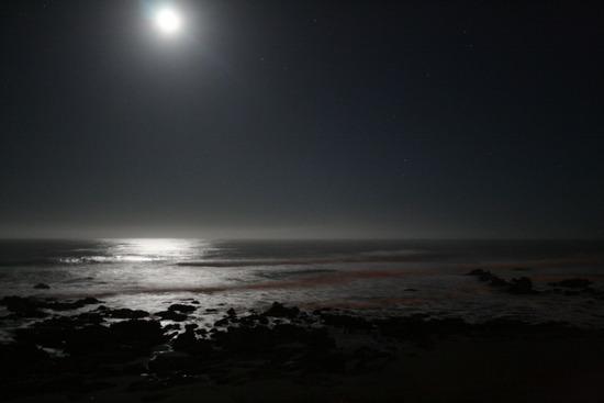 1.1239065580.beach-at-night